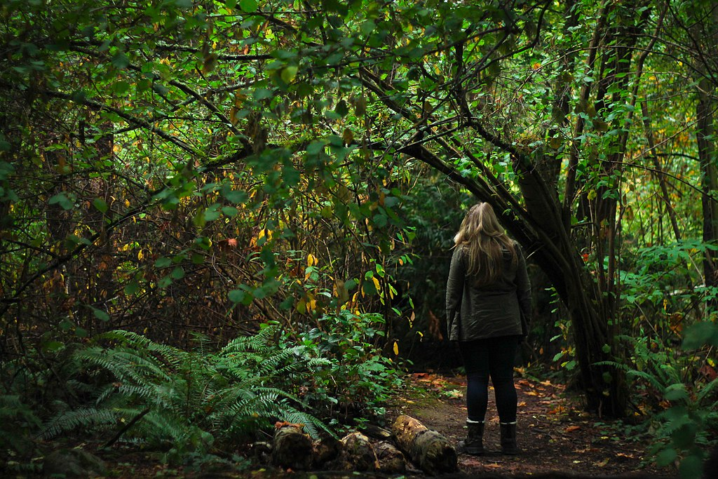 Woman Exploring a Forest